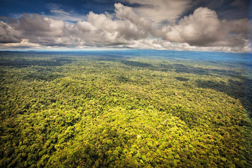 Klimaschutzprojekt in Papua-Neuguinea