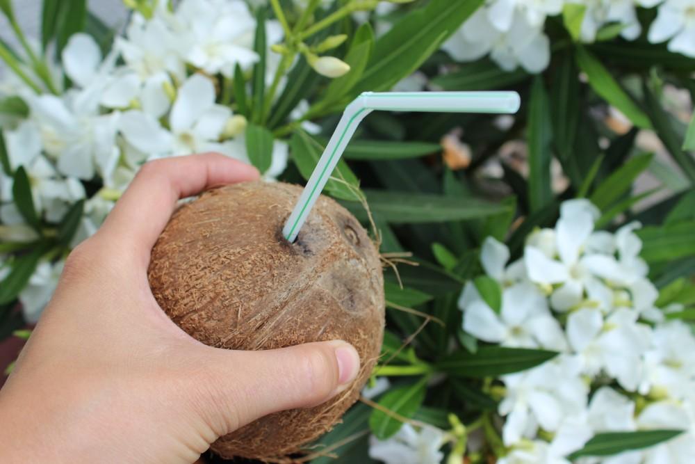 Kokosnuss mit Röhrchen