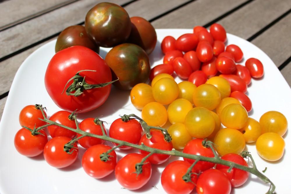 12 fakten ber tomaten die sie nie vermutet h tten. Black Bedroom Furniture Sets. Home Design Ideas
