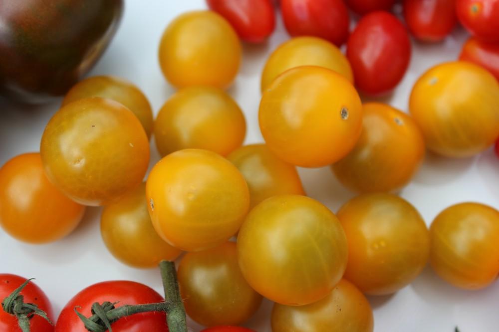 gelbe basische Tomaten