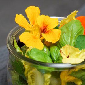 Salat mit Kapuzinerkresse