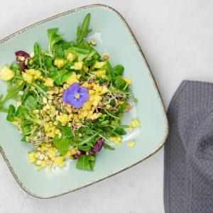 Wintersalat mit Sprossen & Mango-Macadamia Nuss-Dressing