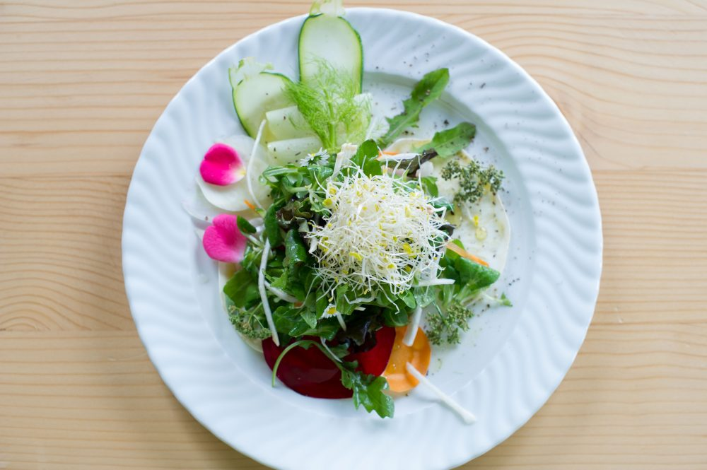 Gemüsecarpaccio mit Salathaube