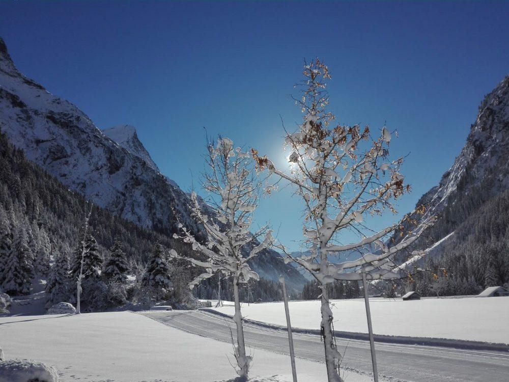 Basische Weihnachten in Tirol - ist das möglich?