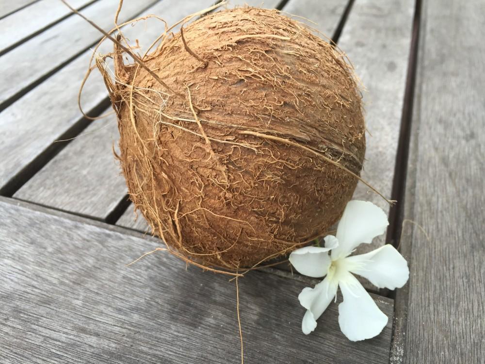 frische Kokosnuss - 100% basisch