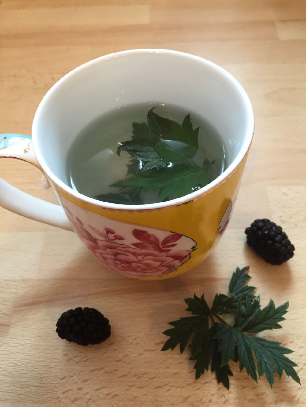 Brombeerblätter-Tee