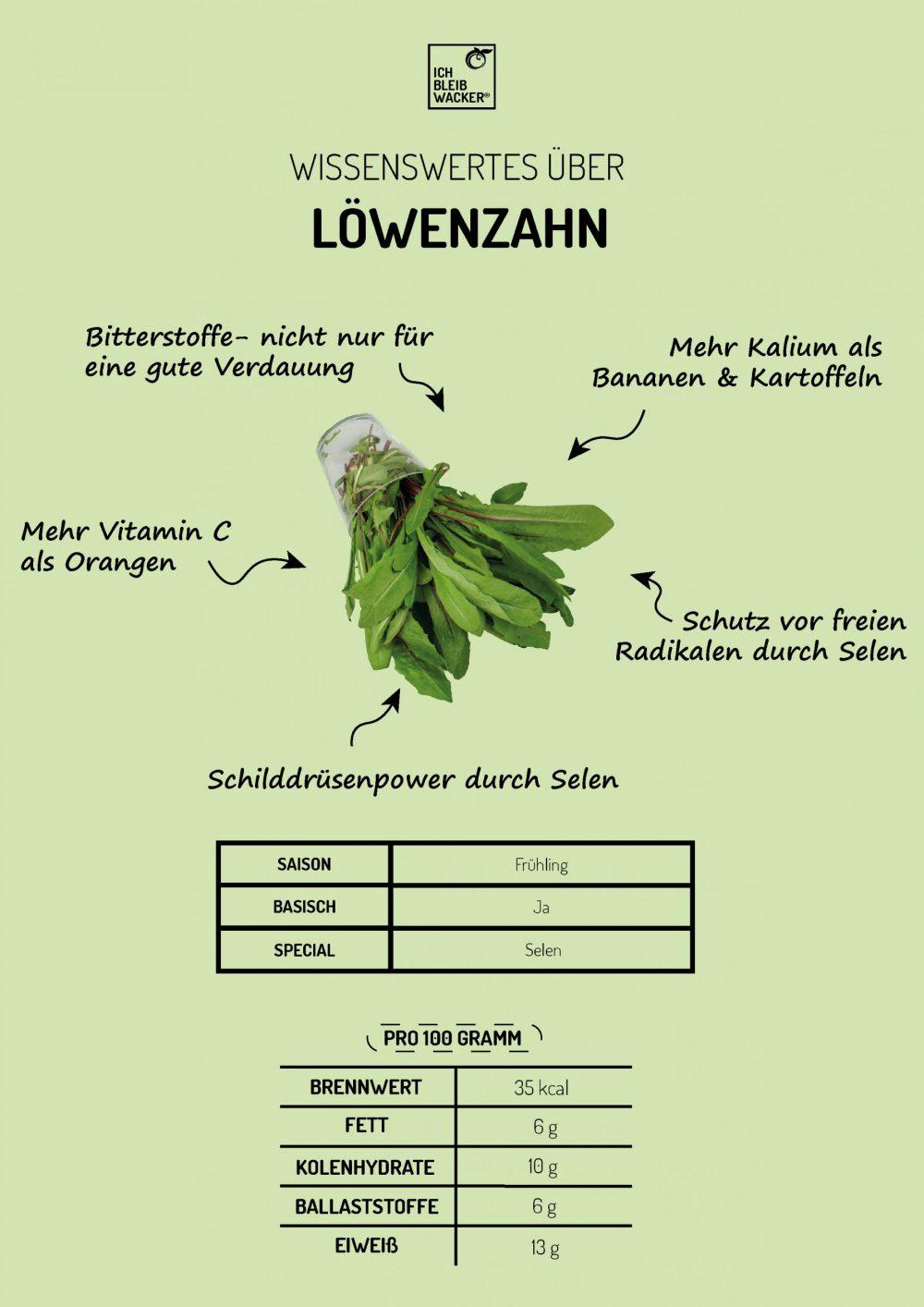 Infografik_Löwenzahn