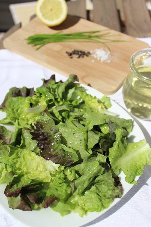 basenfasten, Salat, Basic