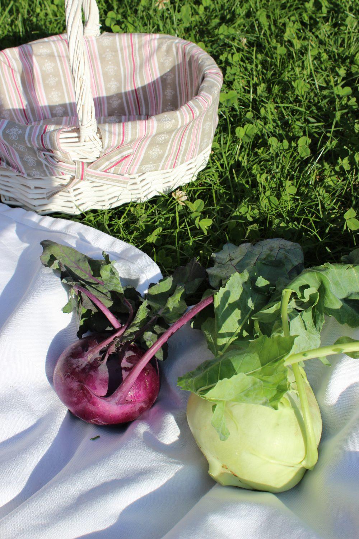 Ernte, Beet, basenfasten, Gemüse