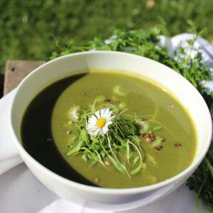 Frühling, Entschlacken, Kräuter, Suppe