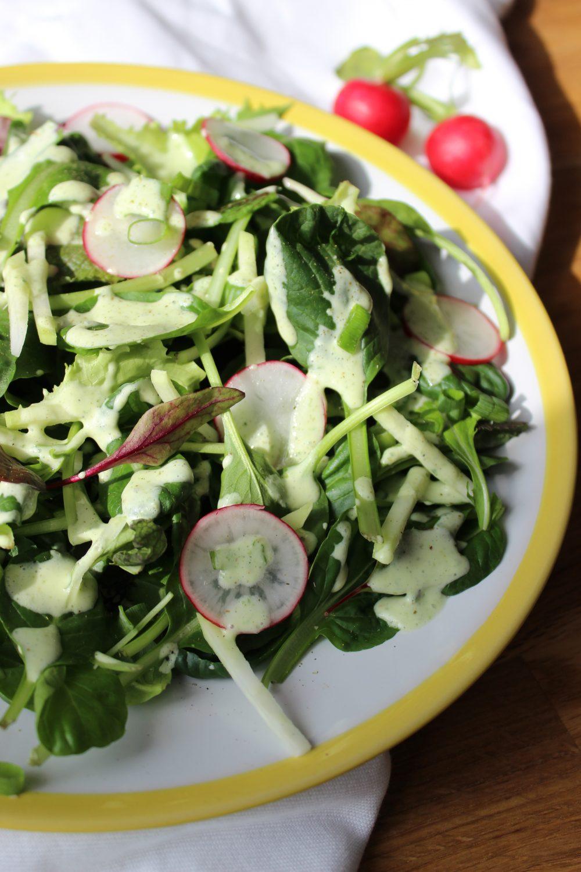 Frühling, basenfasten, Salat