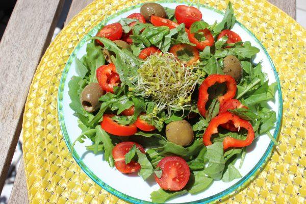 Paprika-Tomatensalat mit Rucola und Oliven
